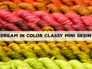 Dream in Color Classy Mini Skein
