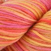 Cascade Yarns 220 Superwash Paints - 9858