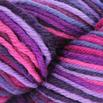 Cascade Yarns 220 Superwash Paints - 9917
