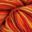 Cascade Yarns 220 Superwash Paints - 9919