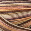 On-Line Supersocke 100 4-Ply Art Color - 1533