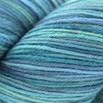 Cascade Yarns Heritage Paints - 9785