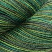Cascade Yarns Heritage Paints - 9824