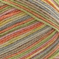 4 Ply Cotton (100g) Java Color