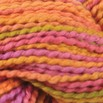 Classic Elite Yarns Verde Collection Seedling Handpaint - 4566