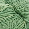 Plymouth Yarn Select Worsted Merino Superwash Kettle Dyed - 1002