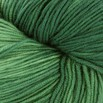 Plymouth Yarn Select Worsted Merino Superwash Kettle Dyed - 1036
